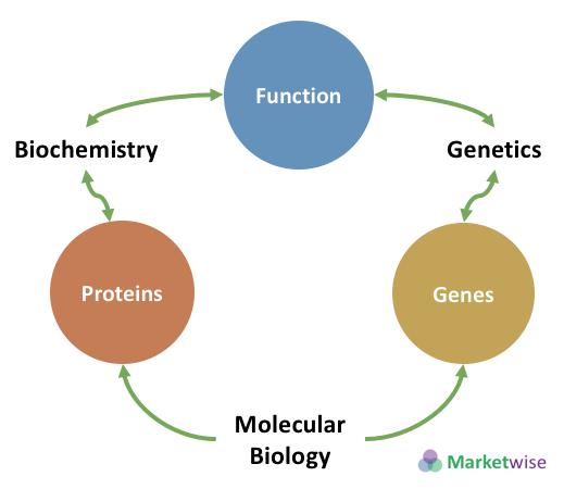 Molecular bio Biochem and Genetics
